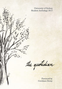 the-quotidian-cover